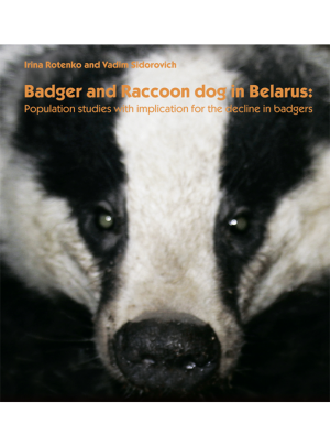 Badger Meles meles  and  Raccoondog Nyctereutes procyonoides inBelarus: Populationstudies with implication for the decline in badgers